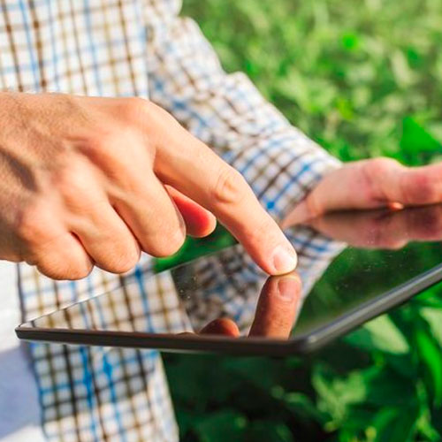 Sitema de información simplificado agrícola